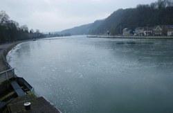 Meuse gelee